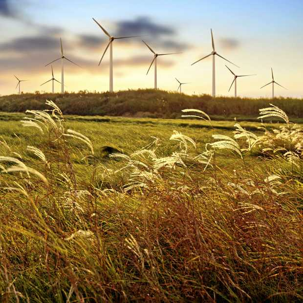 LOOKING FORWARD: The Coopers Gap Wind Farm is part of the South Burnett's energy future.
