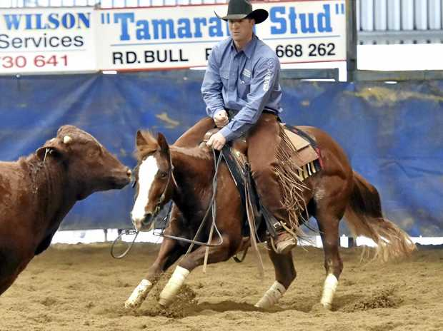 A CUT ABOVE THE REST: Trent Smith competes in the Open Futurity final at the Darling Downs Cutting Club Futurity Show.