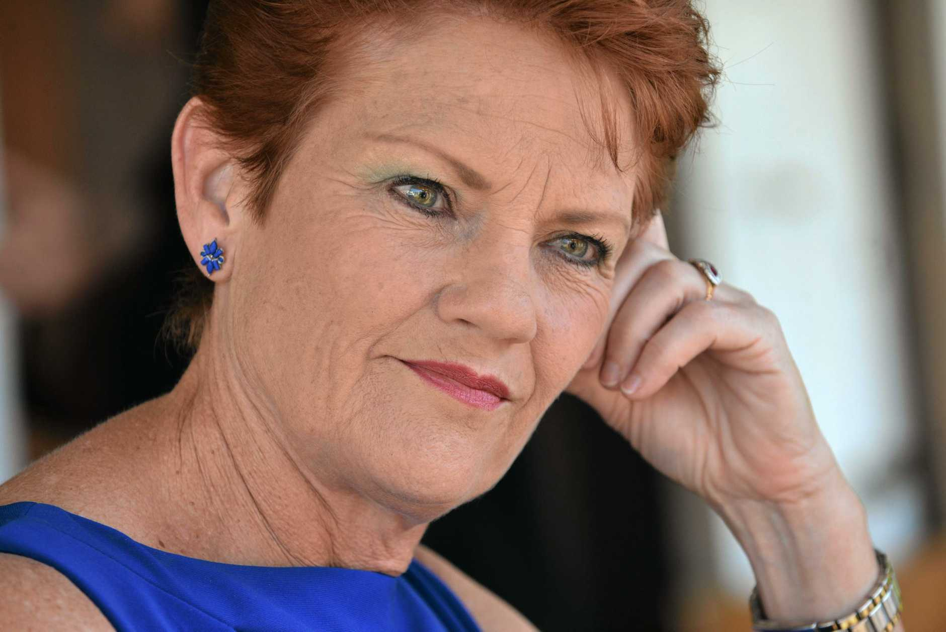 PAULINE Hanson's One Nation Party has a new Queensland leader, with the Senator promoting new recruit and Buderim MP Steve Dickson to the top job.