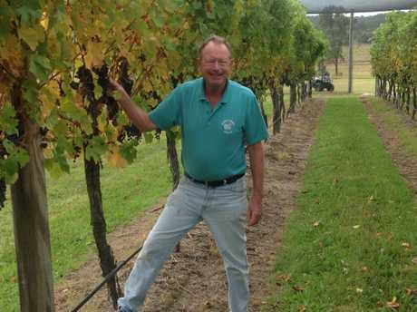 Robert Channon amongst his vineyard.
