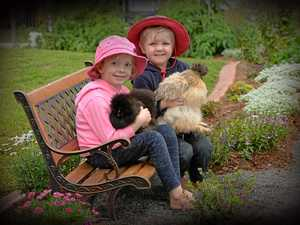 Kindy kids' new winter garden open