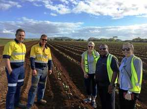 Fiji minister's visit to learn from our farmers