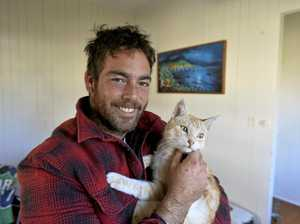Lost on journey across country, cat reunited with family