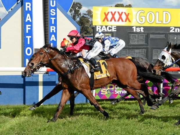 BIG WIN: Chilli Zaim flashed late at huge odds to win his last start at Grafton.