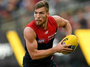 Demons boosted by return of co-captain