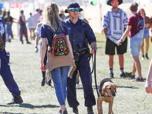 Private school girls act as drug mules at Splendour