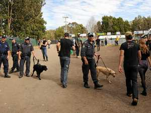 Splendour: police dogs sniff out 267 people carrying drugs