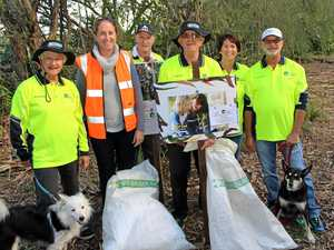 PLANTING SEED: Bush carers are looking for help to plant up Weyba Ck.