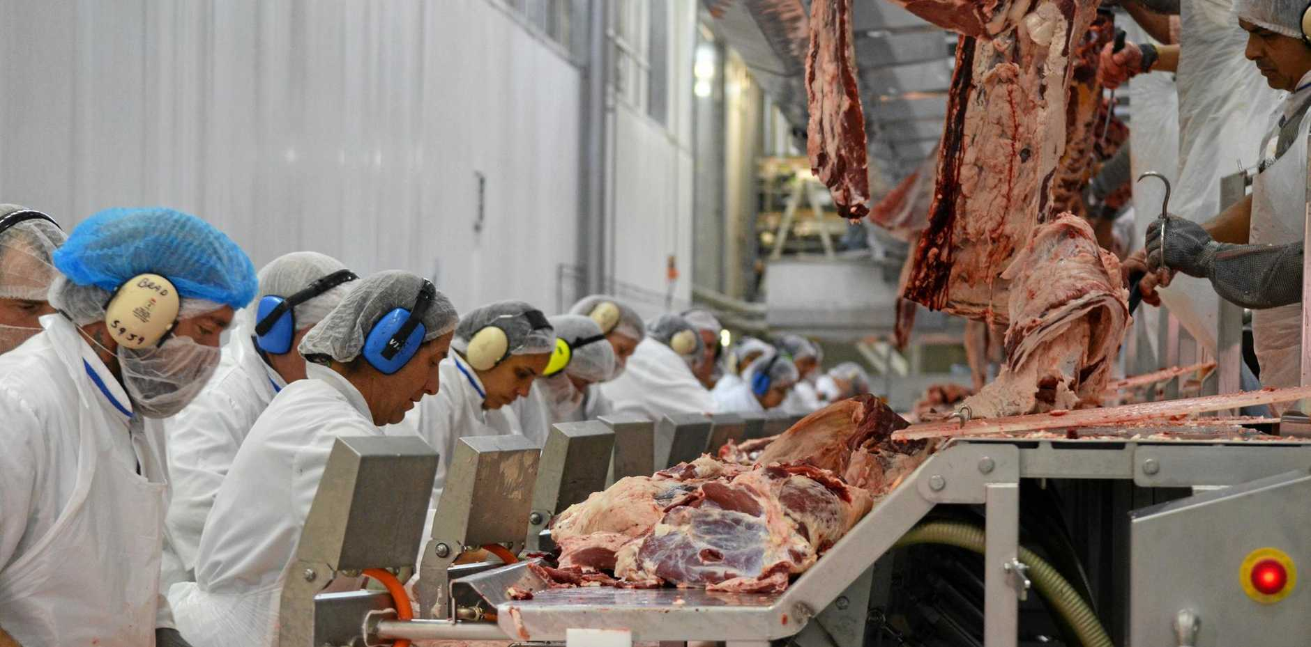 Workers in Oakey Beef Exports boning and packing room. There are more than 300 people employed within this section of the business.