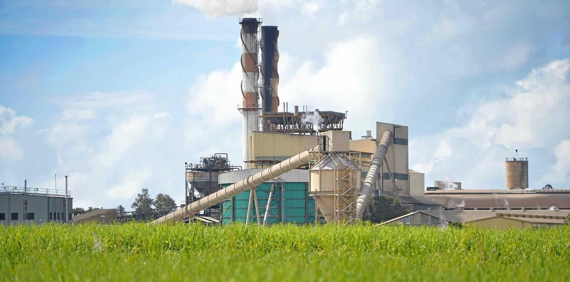 Mackay Sugar's Racecourse Mill crushed 49,849 tonnes this week.