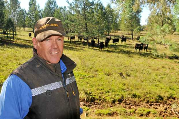 Jason Lewis turns off 50 Wagyu a month and would like to expand his operation.