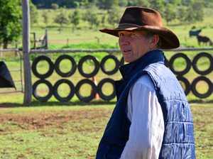 Cattle stolen from Boyneside property