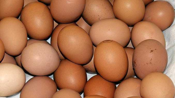 Snowdale Holdings must pay a $750,000 fine and $300,000 in costs for falsely branding eggs free range.
