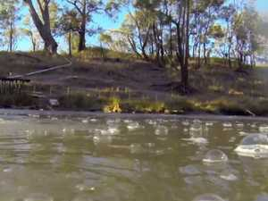 Gas industry say bubbling Condamine dates back before CSG