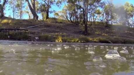 Methane bubbling in the Condamine River. Picture: Channel Nine