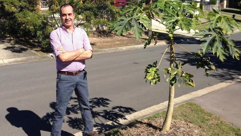 Darren Montesin has been threatened with a $6300 fine for planting paw paw trees in a verge garden. Picture: Darren Cartwright
