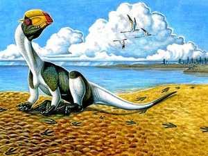 REVEALED: Ipswich dinosaur gets the green light