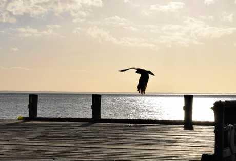 Sun starts to set on Fraser Island.