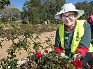 Green thumbs prune famous State Rose Garden for spring