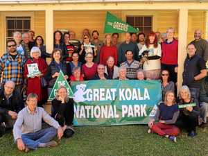 Greens converge in Bellingen for Forest Summit