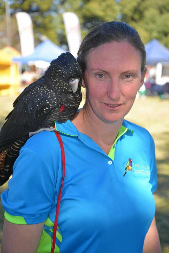 Ellie Compton with her black cockatoo Cuddles at Picnic in the Park on the last day of Jumpers and Jazz in July.