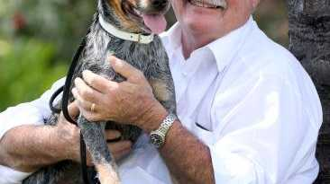 Queensland MP Warren Entsch with blue heeler Snuggles. Picture: Marc McCormack