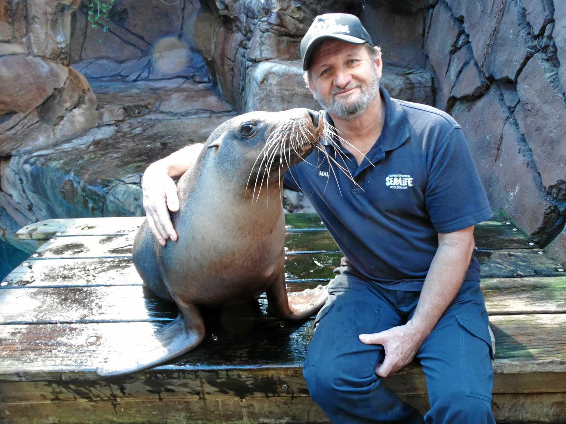 Mal Westwood and his favourite seal Portia at Sea Life Mooloolaba.