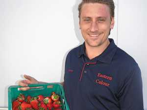 Producing berry good yields