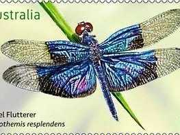 Local dragonflies get their own stamp