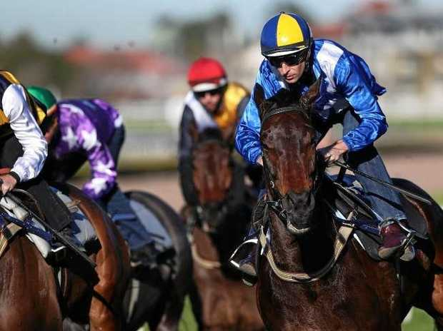 Jockey Hugh Bowman and champion racehorse Winx close late in her first barrier trial at Randwick two weeks ago. Picture: Brett Costello/News Corp Australia