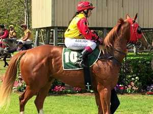 Gelding aims for top prize at Bunya Park