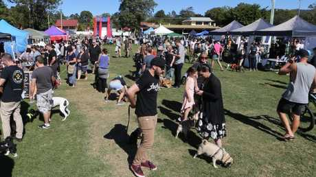Paws at the Park, the first Gold Coast dog markets at Mudgeeraba Showgrounds. Crowds at the show. Picture: Glenn Hampson.