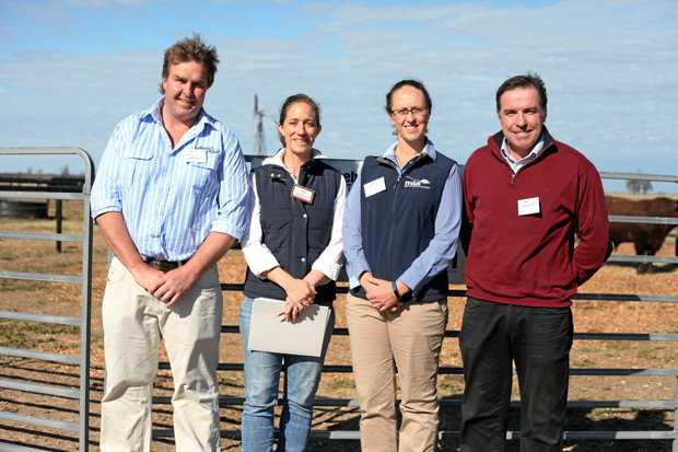BRAINS TRUST: Weebollabolla Field Day speakers included (from left) Tom Bull from Lambpro, Jen Jeffreys from Weebollabolla, Sarah Strachan from MLA and Sam Newsome from Newsome Ag.