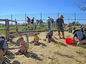 Tree planting a fitting send-off for Landcare's Alby