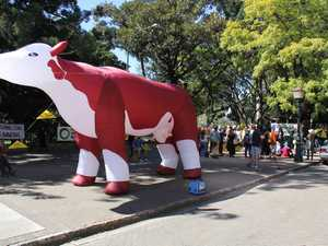 HOLY COW: Inflatable animal used in New Acland protest