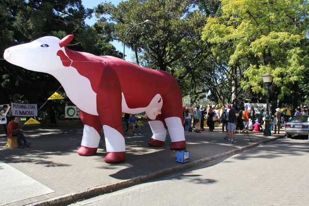 Protesters against the New Acland Coal Mine took to the streets outside Parliament House in Brisbane with a giant inflatable cow.