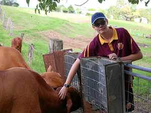 Gympie students crowned beef champions