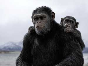 REVIEW: Is War for the Planet of the Apes blockbuster or Bible epic?
