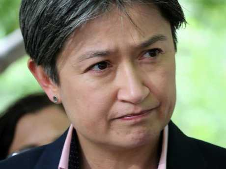 Senator Penny Wong has given a blistering personal speech on the vitriol gay Australians would be subject to if a plebiscite on same-sex marriage was held.