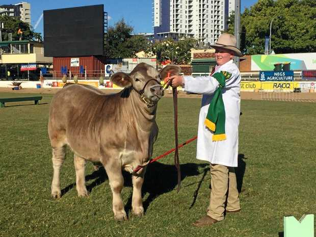 WINNER: Charlie Salter, from Dalby State High School ,was champion junior handler for the 11-13 years category.