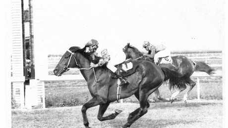 Peter Cowan wins the 1971 Amateur Ladies Bracelet on Plain Jack.