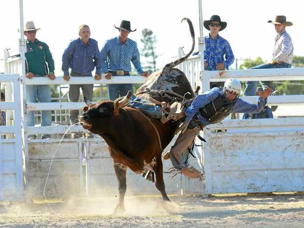 RIDE'EM: Brady Fielder will be in the open bull ride at the Kuttabul Bullarama.
