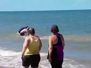 Whale calf stranded off Illawong Beach