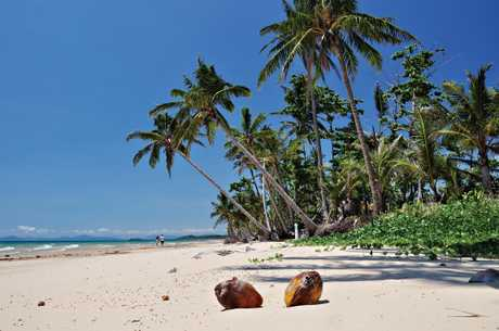 Beautiful Mission Beach in Queensland, Australia.