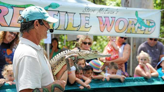 Steve McEwan from Reptile World with Snappy the crocodile at the Sustainable Living and Botanic Spring Fair held at the Botanical Gardens.  November 2, 2014 Photo: Leigh Jensen / The Coffs Coast Advocate