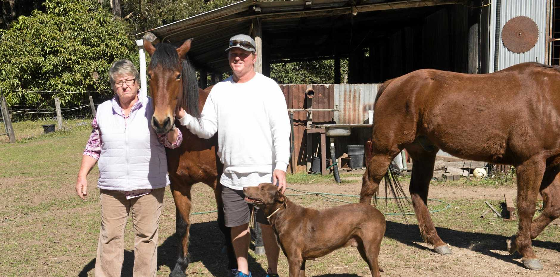 Judy and Marty Wall with another of the family's horses Chrissy and faithful dog Rusty.