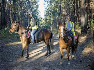 CCA 1608 Missing horse update