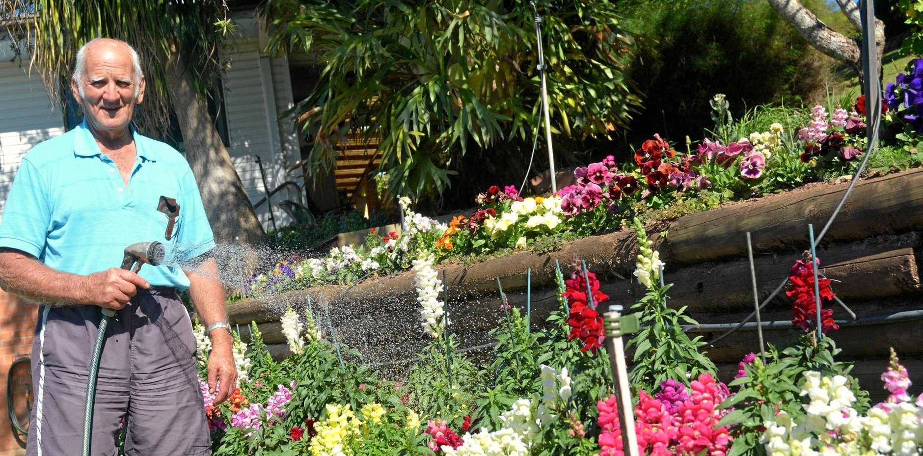 BLOOMING IN COLOUR: Ted Chilcott tends to his bed of mixed flowers.