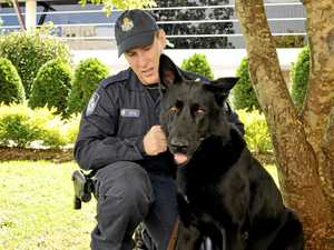 Police pay tribute to Toowoomba's PD Ribot