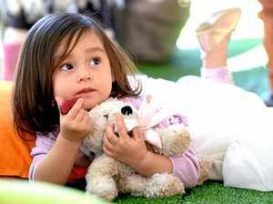 Teddy bear picnic fun after the flood